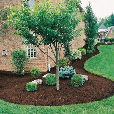 The Best Evergreen Landscaping Fort Collins Colorado CJW